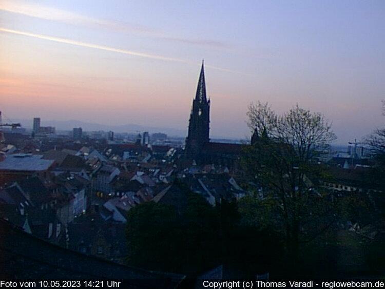 Freiburg im Breisgau Skyline Panorama with Münster